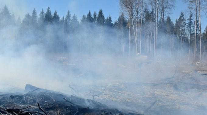 Meža ugunsgrēka dēļ slēdz ceļu Kandavas pusē