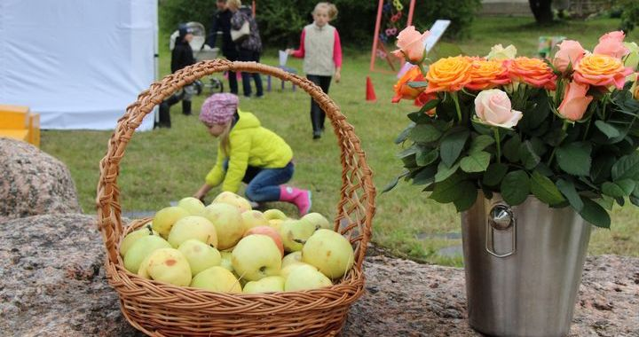Ārlavciema ābolu svētkos