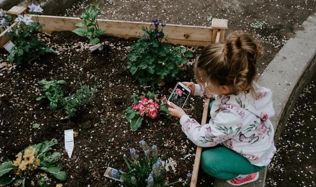 Dārza izskats: kā to padarīt skaistāku?
