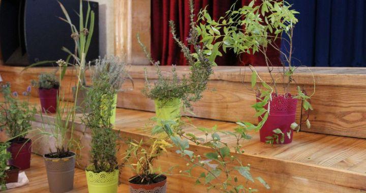 Jaunpilī  godināti sakopto sētu saimnieki