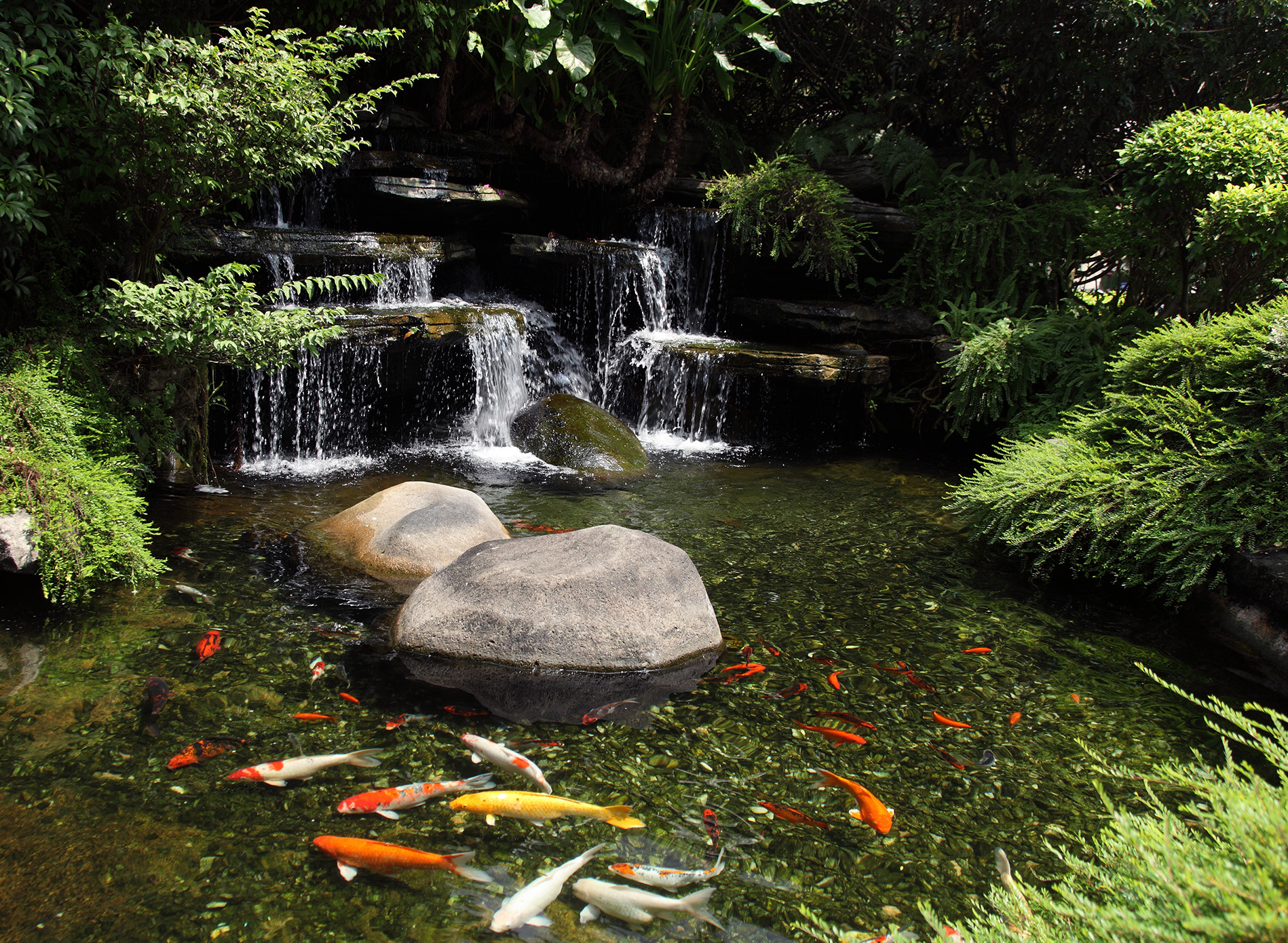 How Get Pond Hold Water