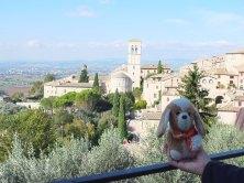 en Assisi (Italia)