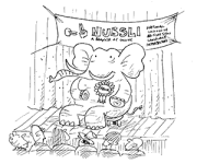 image of elephant in the room