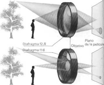 opticas-18.jpg