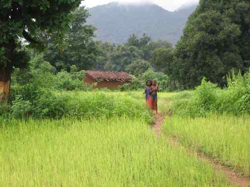 Urwelt? Symbiose von Mensch und Umwelt im Dschungel von Orissa