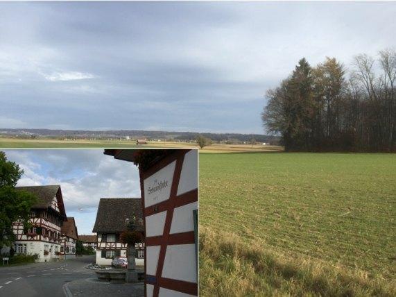 Standortgemeinde Marthalen, ein Kleinod im Zürcher Weinland