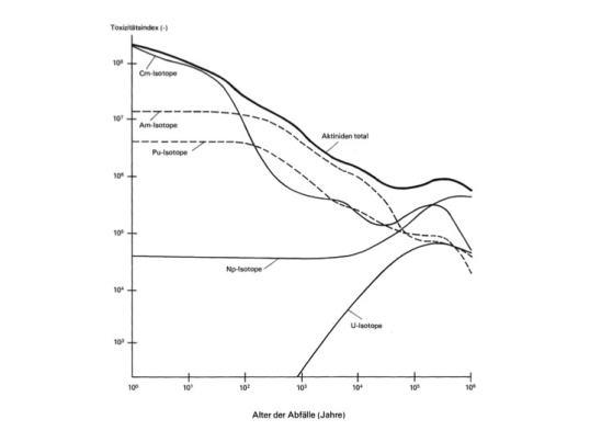 Figur 2: Transurane und Zerfallseigenschaften gemessen am Toxizitätsindex, nach VSE et al. 1978): Anhang 6, Seite A6-10. Zeitmasstab und Toxizitätsindex in doppel-logarithmischer Darstellung Cm = Curium; Am = Americium; Pu = Plutonium; Np = Neptinium; U = Uran