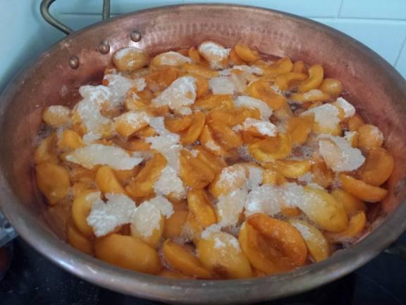 Sucre et abricots - Repos de 12h