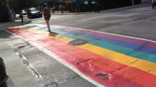 Joshua Freeman CP24 rainbow flag gay pride
