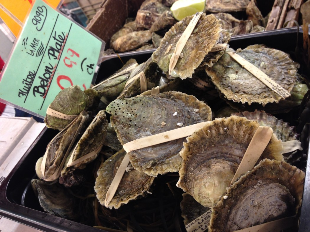 Oysters Fresh Seafood