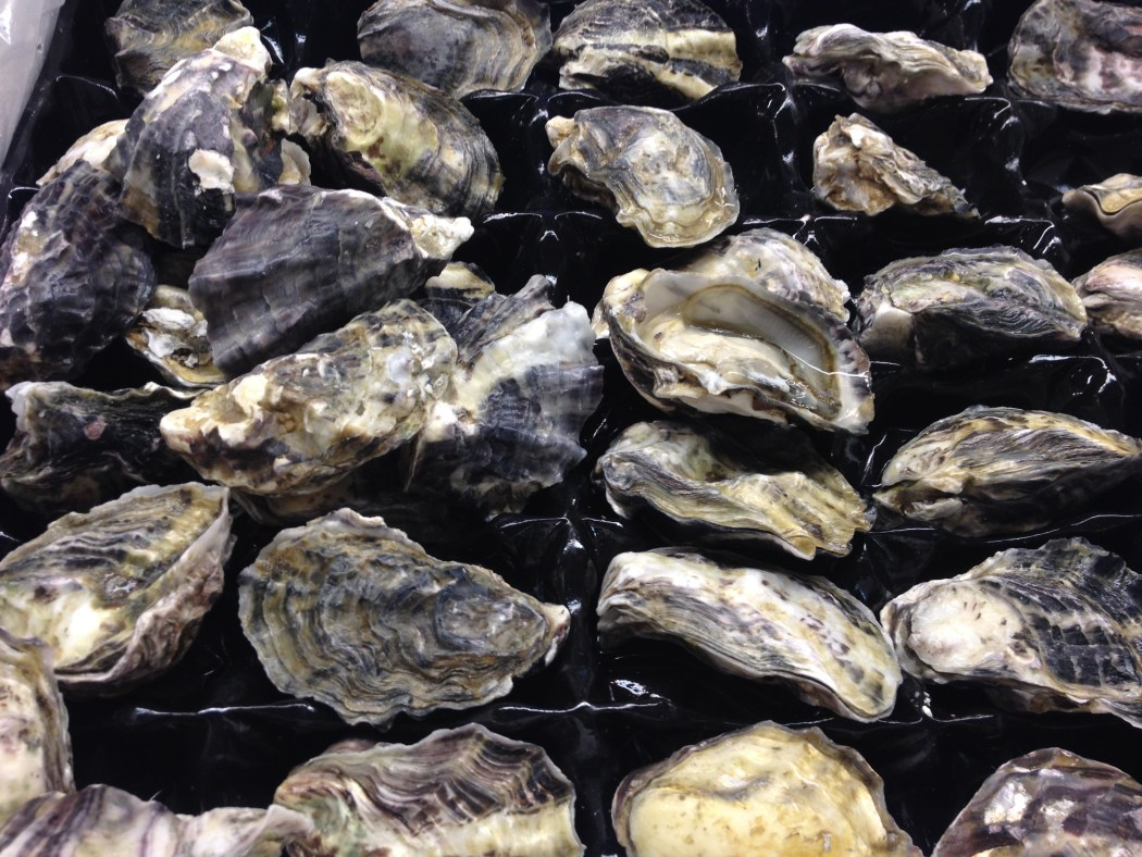 Oysters Fresh Seafood Montreal La Mer