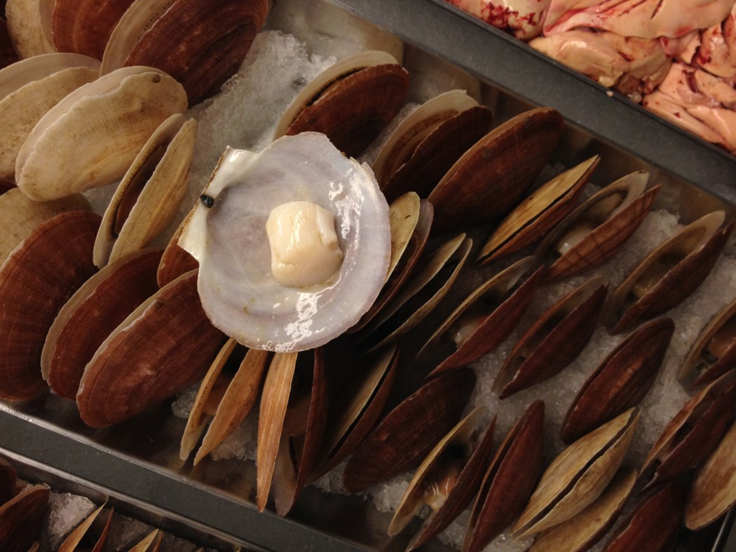 Scallop Raw Seafood Fresh Montreal La Mer