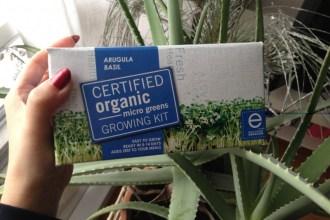 Organic Greens DIY