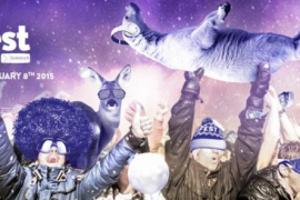 Montreal Purple Violet People Partying Fun Music Happy Dancing Winter Christmas Gift Ideas Nudabite
