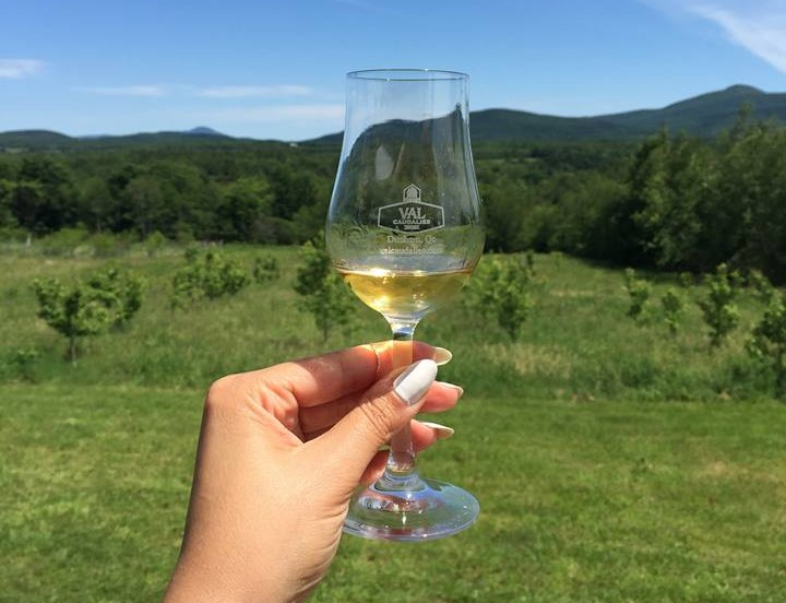 Mixology Quebec Wineries Eastern Townships