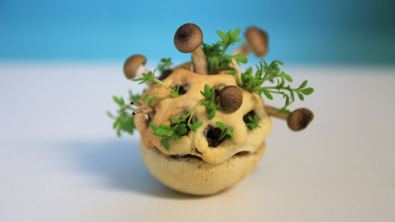 Edible Growth by Chloe Rutzerveld