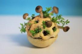 Edible Growth by Chloe Rutzerveld