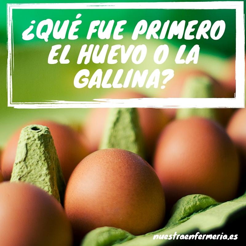 ¿Qué fué primero Huevo o GAllina- (2)