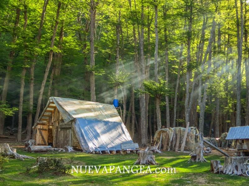 Con el humo de la estufa, la luz atravesando el bosque daba un espectáculo tremendo