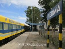 Tren Patagónico en Viedma, preparandose para partir