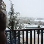 Primeras veces: descubriendo la nieve