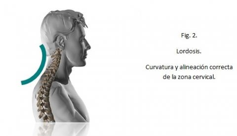 cuello-tablets-fig-2.jpg?fit=480%2C275