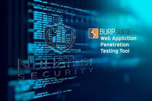 NuHarbor Security Penetration Testing | Burp Suite