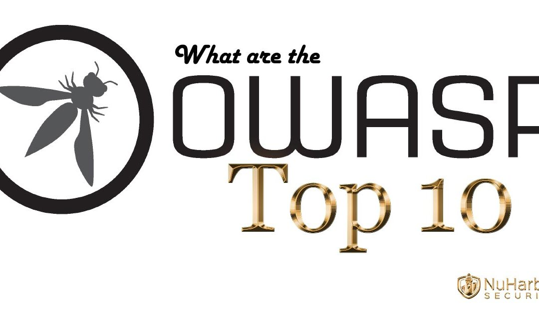 What exactly are the OWASP Top 10?