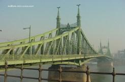 bridge nm