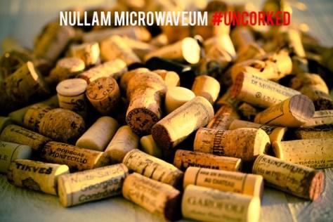 nullam-microwaveum-0516