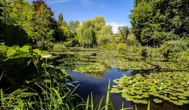 Nullam goes Giverny – de tuinen van Monet