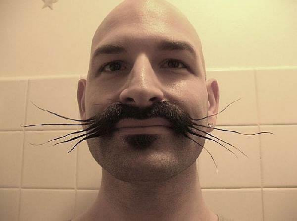 barbes4