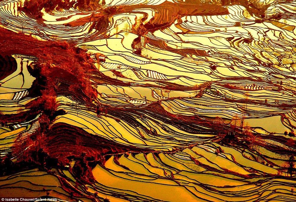 Las terrazas de arroz de Yuanyang, en China