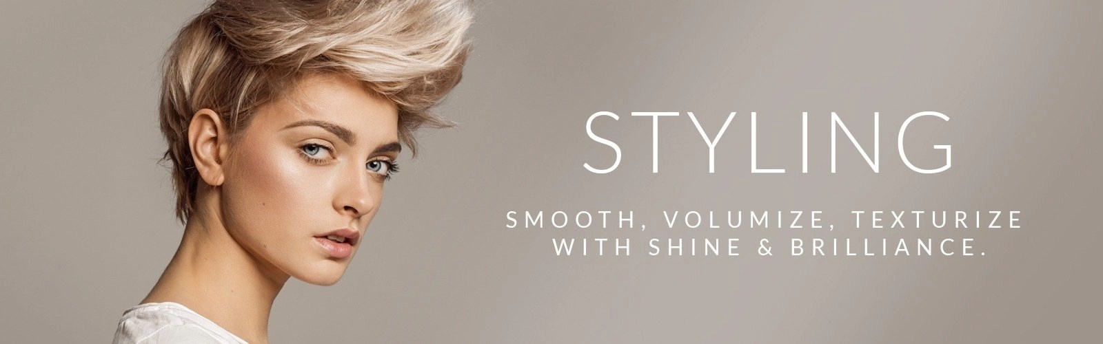MainSection Header Styling