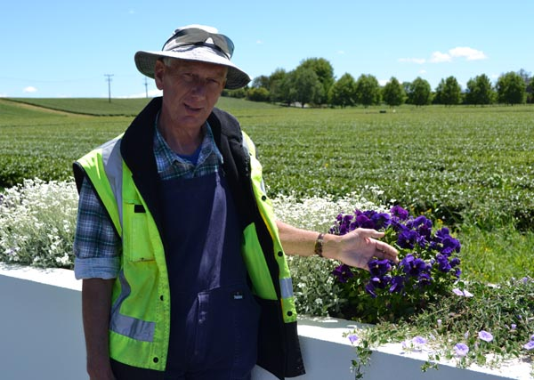 Zealong Tea Estate's Andrew Hatfield