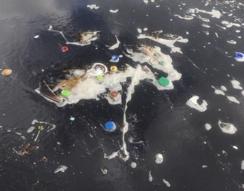 Photo of rubbish in the NZ ocean