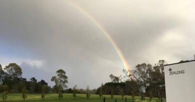 Zealong rainbow