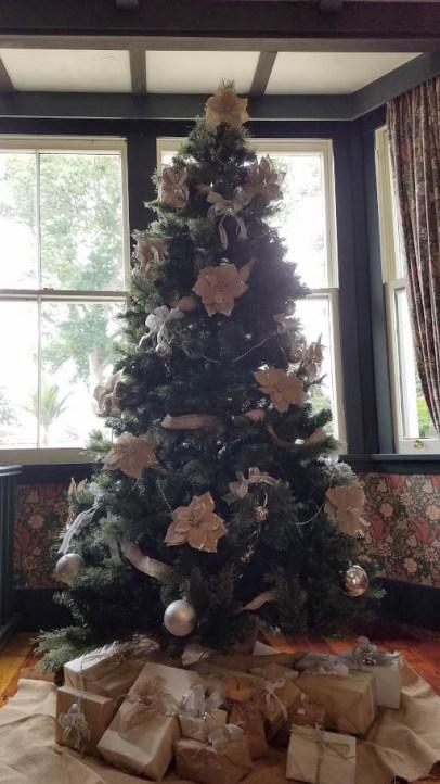 Photo of Woodlands Xmas tree