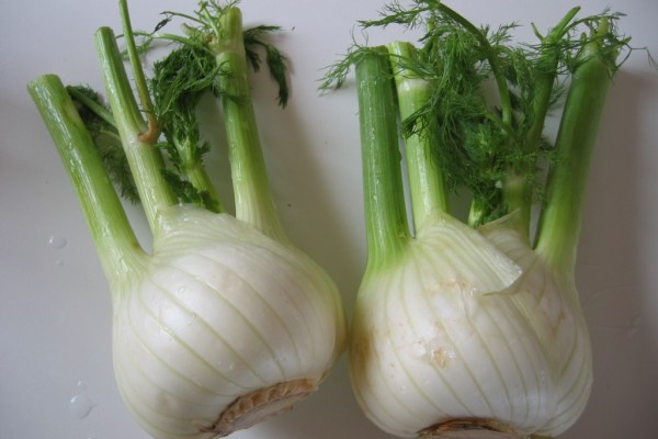 local organic fennel at the supermarket