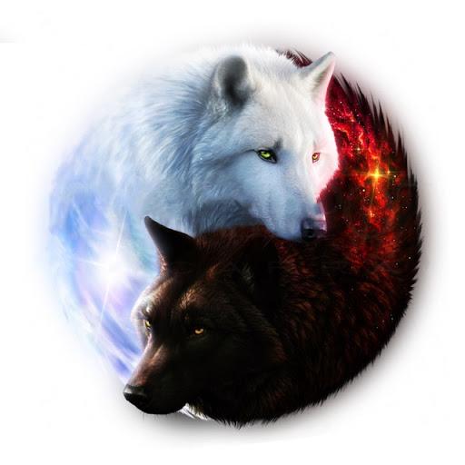 monáda ako biely a čierny vlk v kruhu