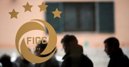 Cambiamo il calcio: proposte per il prossimo presidente FIGC | numerosette.eu