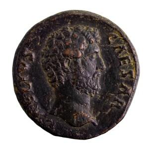 Aelius dupondius