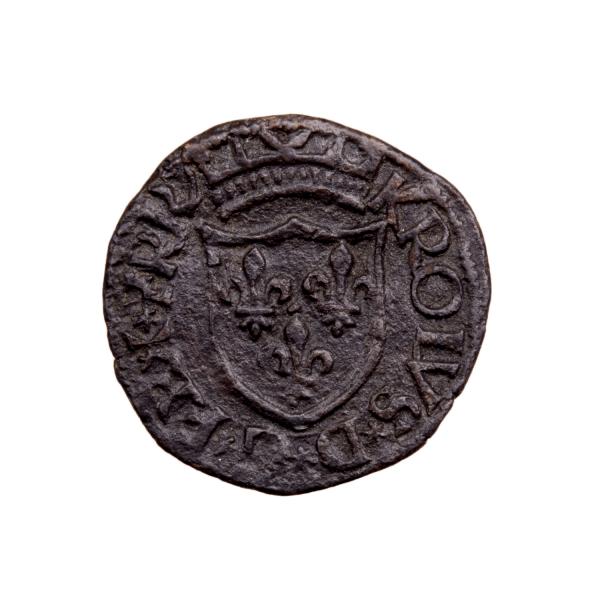Charles VIII Cavalo frappé Aquila