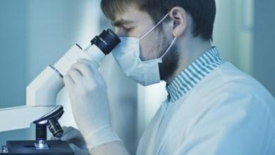 Photo of د پولیو له ویروس سره د سرطان درملنه ممکنه ده