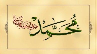 Photo of الرحیق المختوم – نبوي سیرت پښتو – (۷۴مه برخه)