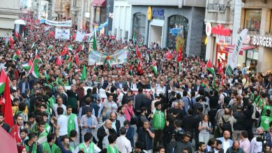 Photo of ترکیه کې د فلسطین په ملاتړ په سلګونو زره خلک را ووتل / انځورونه