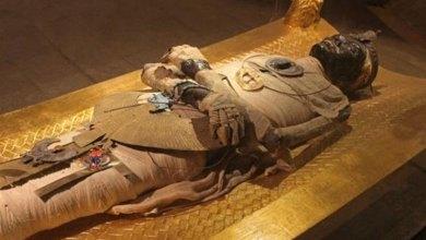 Photo of فرعونه! له تا مو لس (۱۰) حکمتونه زده کړل (!)
