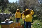 Terra Iblea: quell'impresa da matti nel cuore della Sicilia