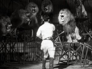 Taming Angry Lions - B & W