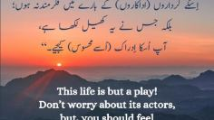 Urdu –